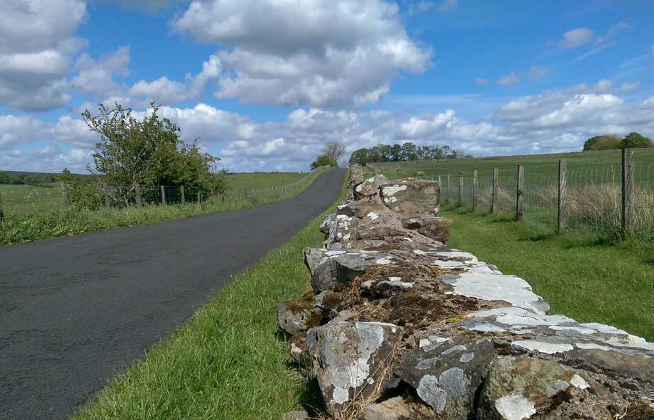 Hadrian's Cycleway Road cycling